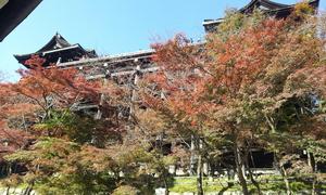 2012-11-21 13.10.40.jpg